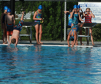 Swimmers Dive Off The Compeion Platforms To Get Practice Started At A Recent Wayne Dolphins Swim Team Local Swimming Pool